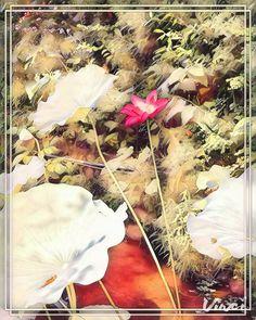 # Ra 30/38 🎨🌈 @Vinci.cam ~ x 38*+%+sizes Trendy Filters for quick photo Editing using Artificial Intelligence. #Vinci #Art175Now #VinciApp #VinciEffects #Vinci_Show _All Is #AfterEffects #FilterEffects #PrismaEffects #EditorEffects by #ArtFilters #PhotoEditing *#Edited_iam to #ARTificialEffects #DigitalArt #NeuralEffects #NeuralArt with #Joyance #JoyRide