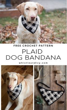 Plaid Crochet Dog Bandana - Make this cute and classic plaid bandana for your furry best friend. The plaid colorwork is perfect for fall and winter. Your pup will look so cute in this buffalo plaid dog bandana! Gato Crochet, Free Crochet, Crochet For Dogs, Crochet Dog Clothes, Crochet Dog Patterns, Crochet Dog Sweater Free Pattern, Plaid Crochet, Bandanas, Dog Sweaters
