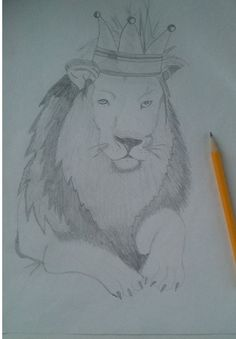 Drawings - animals, lion