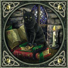 Los gatos negros y la brujería