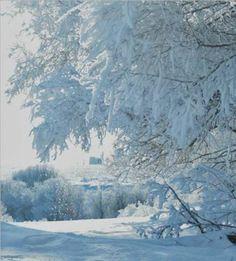 Unity, Saskatchewan - I wish the snow in England was like this! O Canada, Canada Travel, Snow Scenes, Winter Scenes, Happy Birthday Canada, Snow White Art, The Great Migration, Saskatchewan Canada, I Love Snow