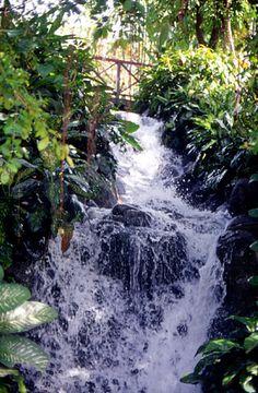 Cascade en Malaisie #nature #jungle #falls