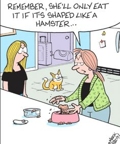 Instructions for the Cat Sitter - Off the Mark by Mark Parisi