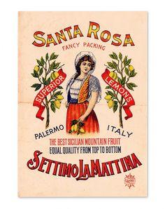 Vintage poster for Sicilian citrus fruits. www.italianways.com/vintage-posters-for-sicilian-citrus-fruits/