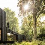 Black Wood House by Marchi Architectes