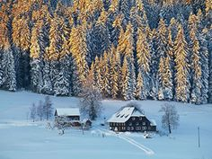 Winter im Schwarzwald – Berlin.de Away We Go, Skiing, Snow, Nature, Outdoor, Alps, Covered Pool, Cross Country Skiing, Places To Visit