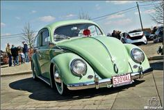 fusca vw bug beetle