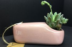 Butter Dish, Planter Pots, Dishes, Tablewares, Dish, Signs, Dinnerware