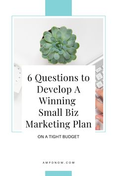 Marketing your business on a budget is simple when you have a plan! Every small business needs a clear marketing plan in order to stop wasting money and overcome the overwhelm. Marketing Strategies, Marketing Plan, Small Business Marketing, Tight Budget, Growing Your Business, Budgeting, Place Card Holders, Money, How To Plan