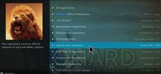 Video Detective Add-on Kodi 17.1 Krypton step 17