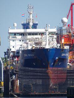 http://koopvaardij.blogspot.nl/2017/05/25-mei-2017-in-dok-bij-damen-shipyard.html    CORAL PATULA  Bouwjaar 2009, imonummer 9425241, grt 7251  Eigenaar Coral Patula Shipping B.V., Rotterdam