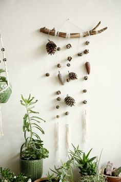 This special wall hanging gives your home Bohemian rastic feeling. It is one of a kind item, that made of the beauty of our planet. ^^^^^^^^^^^ width- 40cm ( 15.5 inches ) length- 80cm ( 31.5 inches) ^^^^^^^^^^^ Wooden Bohemian decor, wooden wall art, Rustic home decor, Acorn wall hanging, Natural wall Hanging, nature wall decor, Natural boho decor