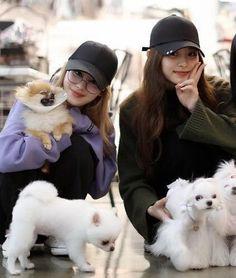 Twice Group, Twice Once, Tzuyu Twice, Minatozaki Sana, Im Nayeon, Hirai Momo, Group Pictures, One In A Million, Fan Art