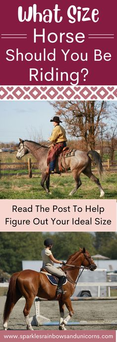 Have you ever thought about what the ideal horse size is for you? In this article I go over the ideal sized horse. It doesn't mean that you can ride a horse smaller or bigger just that this is the supposed perfect size for you. Find out! Black Spades, Western Pleasure, Lucky Man, The Draw, Black Heart, Show Horses, Westerns, Equestrian