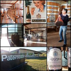 Cantina Paternoster #cantinapaternoster #vinandum2016 #vino #wine #barile #aglianicodelvulture #basilicata