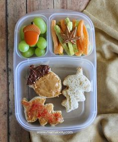 Fall Bento in Easylunchboxes - mamabelly.com