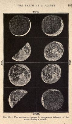 I would love a poster sized print of this please. The phases of the Moon. Laboratory lessons in general astronomie nemfrog Photowall Ideas, Science Room, Science Art, Earth Science, Plakat Design, Michelle Phan, Space And Astronomy, Polychromos, Moon Art