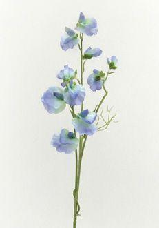 sweetpeas sweetpeas pinterest sweets art births and flower. Black Bedroom Furniture Sets. Home Design Ideas
