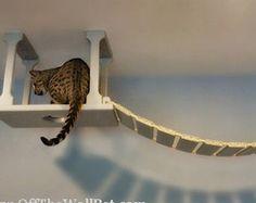 SkyWay Cat Bridge Starter Pack