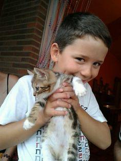 El gatito Nicolas adoptado por los Ponsos. Julio 13