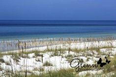Glenn Studios:  Glenn Photography Panama City Beach, Florida
