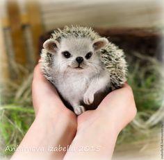 Amazing, lifelike needle felted hedgehog by Russian artist Anisimov Isabella