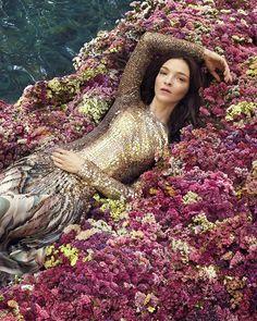 Instagram Paradise Found, Best Perfume, Italian Fashion, Fashion Labels, Roberto Cavalli, Fashion Brand, Supermodels, Fashion Photography, Stylists