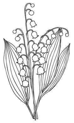 choclate lab coloring pages - photo#34