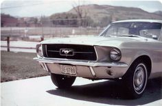 '67 Mustang just like the one in my yard.