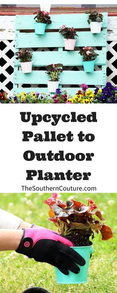 Decorating your porch and adding color to your flower gardens doesn't have to be expensive or time consuming. I have the EASIEST and CHEAPEST way to get your yard ready to go this Spring.