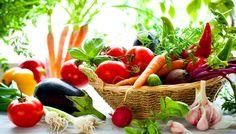 野菜を無料プレゼント!新鮮野菜も販売中!【タダヤサイドットコム】