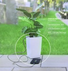 https://www.indiegogo.com/projects/bioo-charge-your-phone-with-the-power-of-a-plant