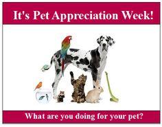 Happy Pet Appreciation Week!