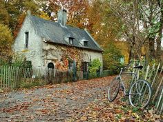 cottage and a bike