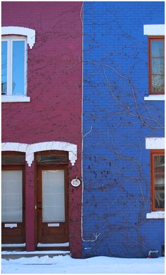 The colourful houses of Plateau Mont Royal, Montreal. I'm dreaming of painting my house now.