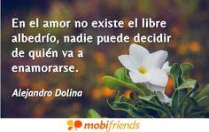 En el amor no existe el libre albedrío, nadie puede decidir de quién va a enamorarse.