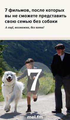 7 фильмов, после которых вы не сможете представить свою семью без собаки