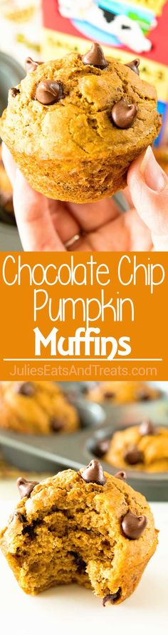 Homemade Chocolate Chip Pumpkin Muffins Recipe ~ Delicious, Homemade Chocolate Chip Pumpkin Muffins Perfect for Breakfast on the Go! Naturally Sweetened with Honey! Fall Desserts, Just Desserts, Delicious Desserts, Dessert Recipes, Yummy Food, Veggie Recipes, Snack Recipes, Tasty, Snacks