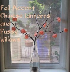 Picture of Chinese Lantern Flowers and Pussy Willow Sprigs