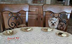 Food time.