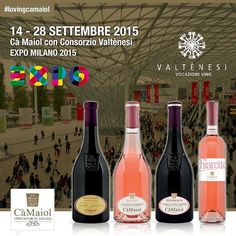 14th to 28th September 2015 We will be present at EXPO with Consorzio Valtènesi with our:  FABIO CONTATO Garda D.O.P. Classico ROSSO ROSERI Vigneti Storici Valtenesi Chiaretto D.O.P. NEGRESCO Vigneti Storici Garda D.O.P. Classico Rosso CHIARETTO Maiolo Garda D.O.P. Classico  See you there!  #lovingcamaiol #wine #vino #food #lugana #camaiol #instawine #luganalovers #gtwine #sommelier #degustazione #vineyard #winetasting #luganadop #italianwine #condiviniamo #winery #cantina #vigneti #redwine…