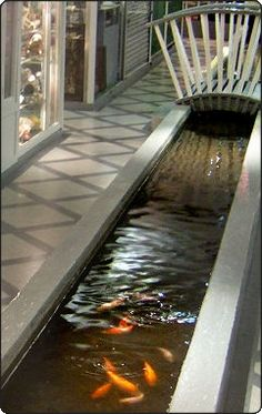 The lost river of Tyburn in London running under the basement of Greys Mews. Full history here