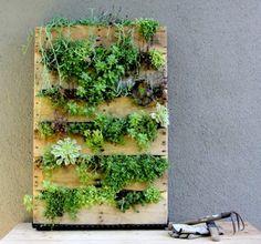 Pallet revestido se transforma em jardim vertical de baixo custo