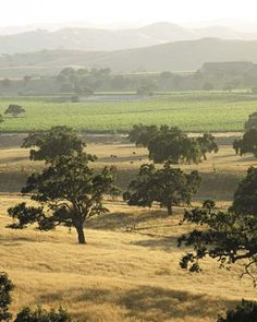 Santa Ynez Valley, CA -  This valley planted a seed in my heart for the simple life and a love for country living.