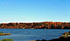 The blue water hitting the autumn-painted shore is just beautiful this year at Cowan Lake State Park! Can you picture you and your boat on the lake?   http://www.clintoncountyohio.com/list/parks/cowan-lake-state-park2  image credit: Photo by Sarah Newton  #fallcolors #autumn #DaytonFall
