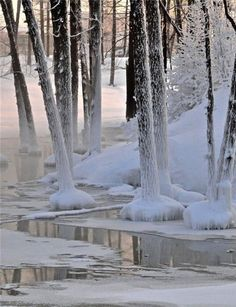 *winter