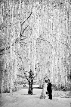 Stunning winter wedding photo by PMG Images | Found for you by www.astrabridal.co.nz |