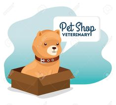 pet shop veterinary with little dog in box carton vector illustration design Illustration , Florist Logo, Little Dogs, Pet Shop, Scooby Doo, Pets, Box, Illustration, Fictional Characters, Shopping