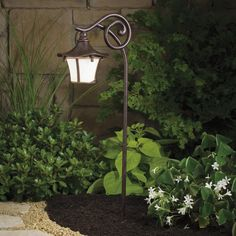 Ultimate guide to backyard and landscape lighting ideas. We explain every type with photos and then have amazing photo gallery of the best landscape lights. Landscape Lighting Design, Olive Garden, Path Lights, Outdoor Lighting, Lighting Ideas, Yard Lighting, Cool Landscapes, Outdoor Landscaping, Light Art
