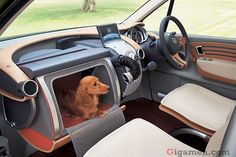 Wonderful Open-hearted Wagon  http://www.honda.co.jp/dog/wow/